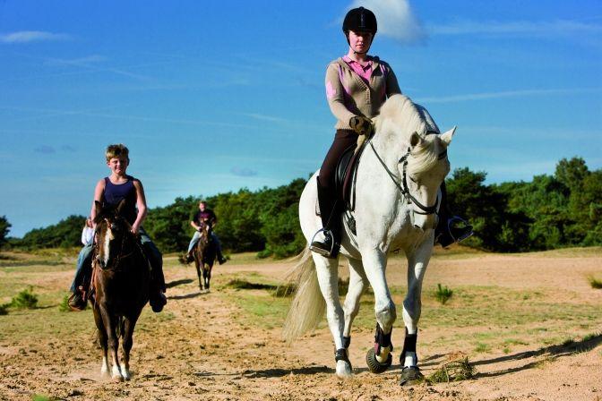 Huifkartocht en rit te paard