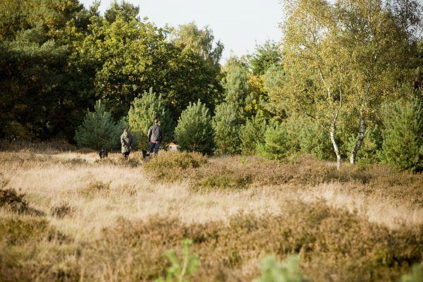 Wandeling onder leiding van een verkenner Kempen~Broek