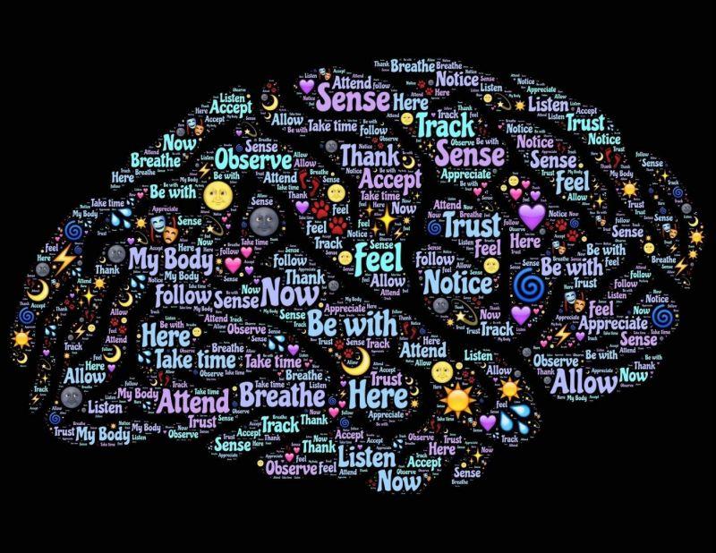 Positieve Gezondheid: Je brein als medicijn