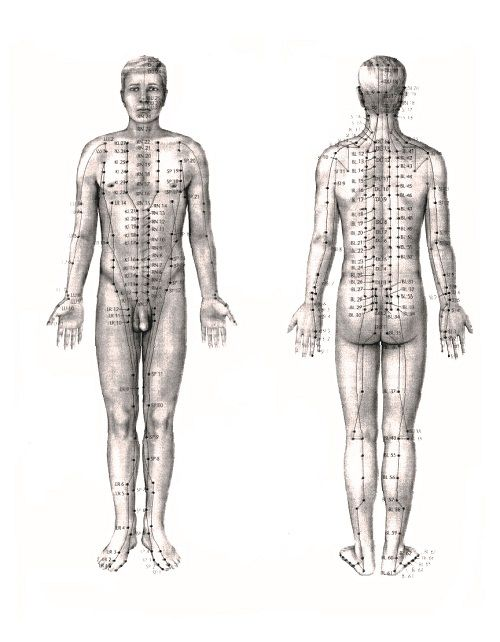 Acupunctuur - Informatieavond