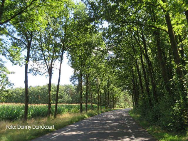 MTB Route Weert volledige zuidlus 42 km