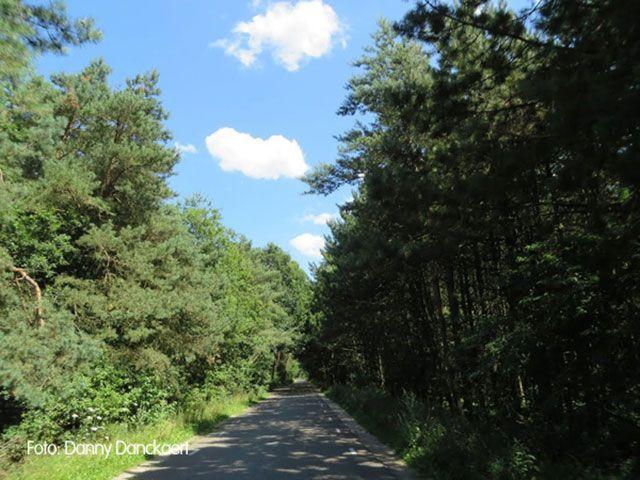 MTB Route Weert deel van zuidlus - 25 km