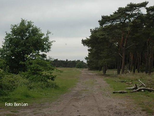 MTB Route Weert noordlus 12 km