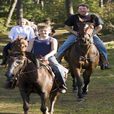 Paardensport Centrum Laar
