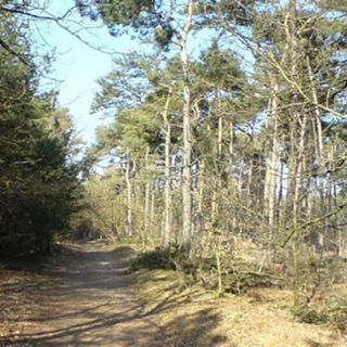 MTB Route Weert deel van zuidlus - 34 km